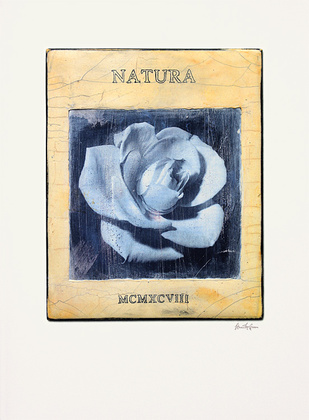 Stuart McQueen Natura