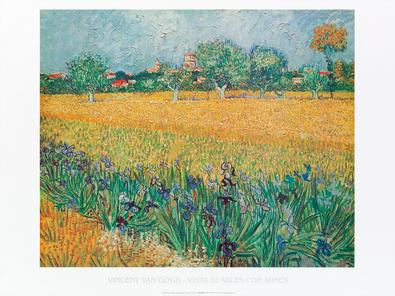 Vincent van Gogh Vista di Arles con irises