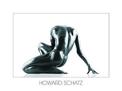 Howard Schatz aesthetik