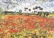 Van gogh vincent field of poppies 62830 medium