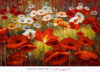 Lucas Santini Meadow Poppies II
