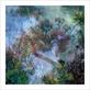 Le beuan benic nicolas vegetaux ix 2007 56217 medium