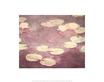 Monet claude water lilies le ninfee rosa medium