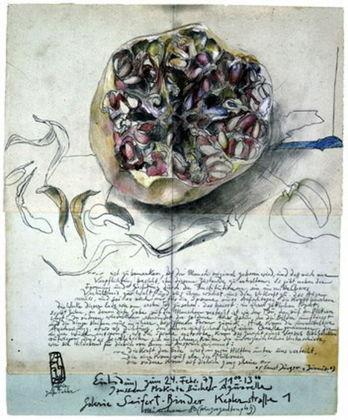 Horst Janssen Granatapfel handsigniert