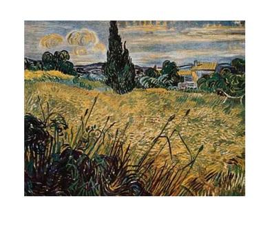 Vincent van Gogh Gruenes Weizenfeld