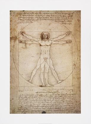 Leonardo da Vinci Schema Delle Proporzioni (gross)