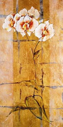 Susan Hayes Orchid Suite