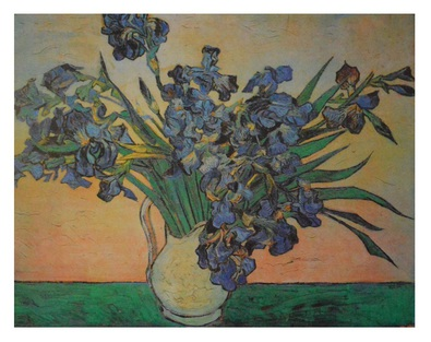 Vincent  van Gogh Irisdtrauss