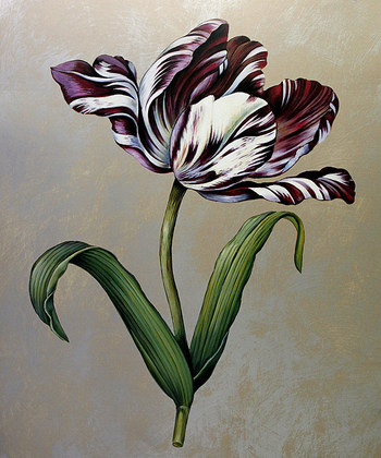 Jill Deveraux 2er Set 'Parrot Tulip I + II'