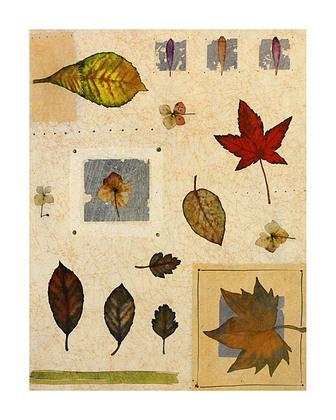 Nicht bekannt Herbstblaetter