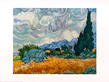 Van gogh vincent cypress trees medium