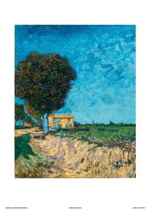 Vincent van Gogh  Allee bei Arles, 1888