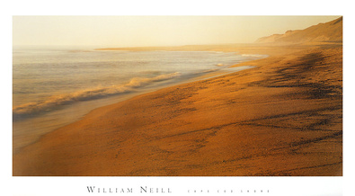 William Neill Cape Cod Shore