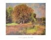 Renoir auguste bluehender kastanienbaum 44301 medium