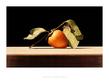 Arbuckle john persimmon medium