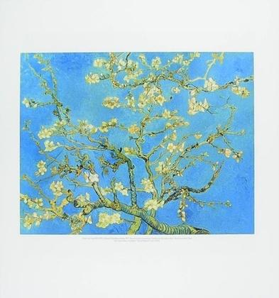 Vincent van Gogh Bluehende Mandelbaumzweige