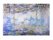 Monet claude wasserlilien 61300 medium