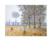 Monet claude felder im fruehling 49087 medium