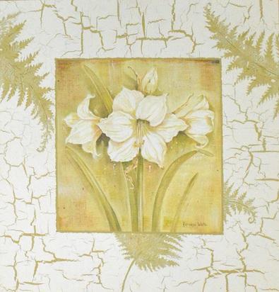 Kathryn White Spring Amaryllis