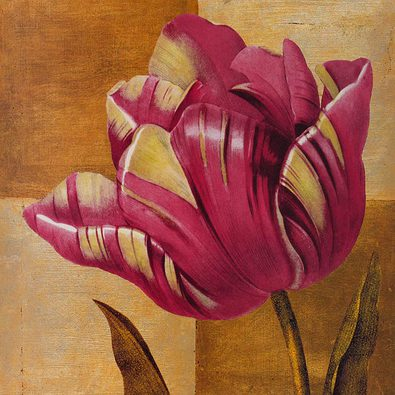 Studio 5 3er Set 'Modern Tulip' + 'Modern Wild Rose' + 'Modern Moss Rose'