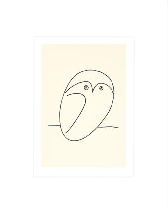 Pablo Picasso Eule