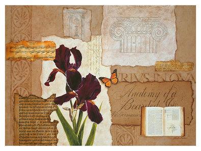Gloria Eriksen Iris Study II