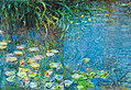 Monet claude les nympheas 38918 medium