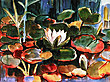 Schmidt rottluf waterlilies 39761 medium