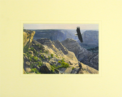Dino Paravano Bald Eagle over Canyon de Chelley