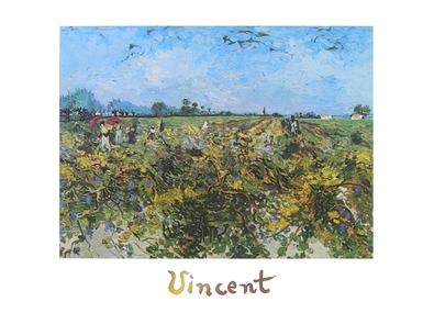 Vincent van Gogh Der gruene Weinberg