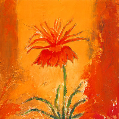 Nicht bekannt Blume I