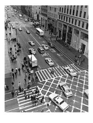 Christopher Bliss 57th Street and 5th Avenue
