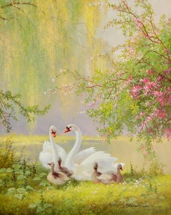G. Neswadba Schwaene mit rosa Blueten