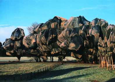 Christo und Jeanne-Claude Wrapped Trees Nr. 13 (Riehen)