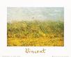 Van gogh vincent the wheat field medium