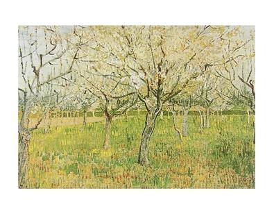 Vincent van Gogh Der Obstgarten