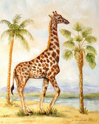 Churchill alexandra giraffe africana large
