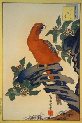 Sugakudo Papagei und Zuikostrauch