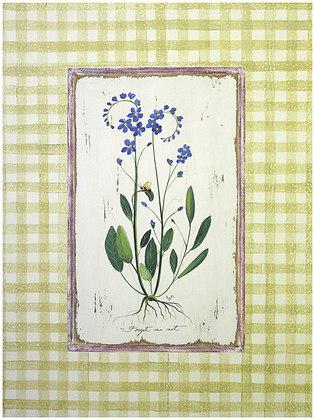 Jan Cooley 4er Set 'Forget me not' + 'Tassel Hyacinth' + 'Garden Valerian' + 'Lesser Periwinkle'