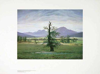 Caspar David Friedrich Der einsame Baum
