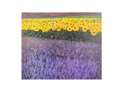 Eleonore Baur-Brinkman Sonnenblumen 2230