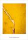 Helen Frankenthaler Sesame, 1970