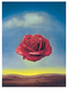 Dali salvador meditative rose 1958 medium