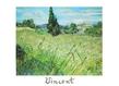 Vincent van Gogh Das gruene Kornfeld mit Zypressen