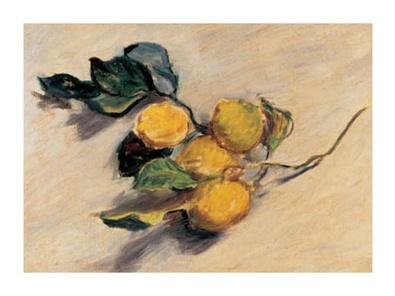 Claude Monet Branche de citronnier