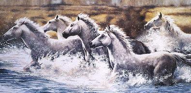 Ralph Steele Runnings Wild