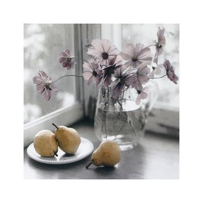 Sondra Wampler 2er Set 'Purple Flowers & Pears' + 'Roses & Apples'