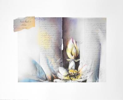 W. Reinshagen Blumen II