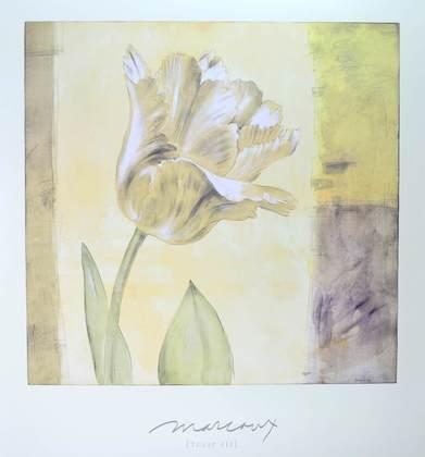 Julianne Marcoux Tulip II