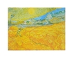 Van gogh vincent die ernte 49105 medium